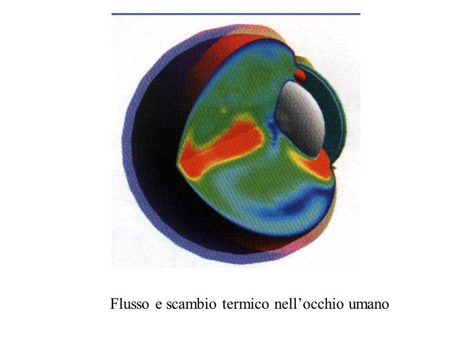 Flusso e scambio termico nell'occhio umano