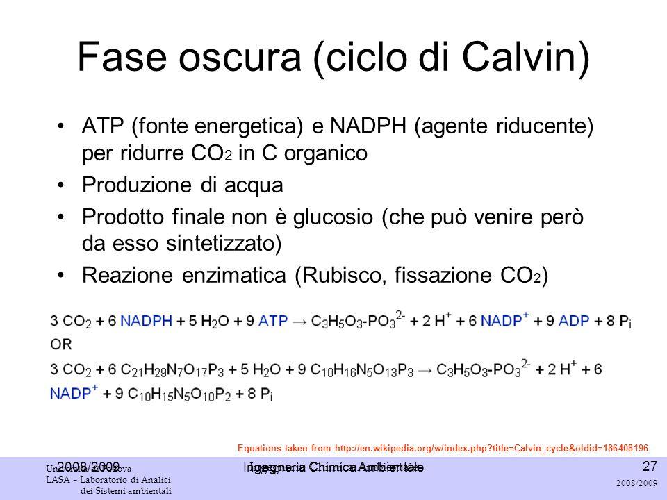 Fase oscura (ciclo di Calvin)