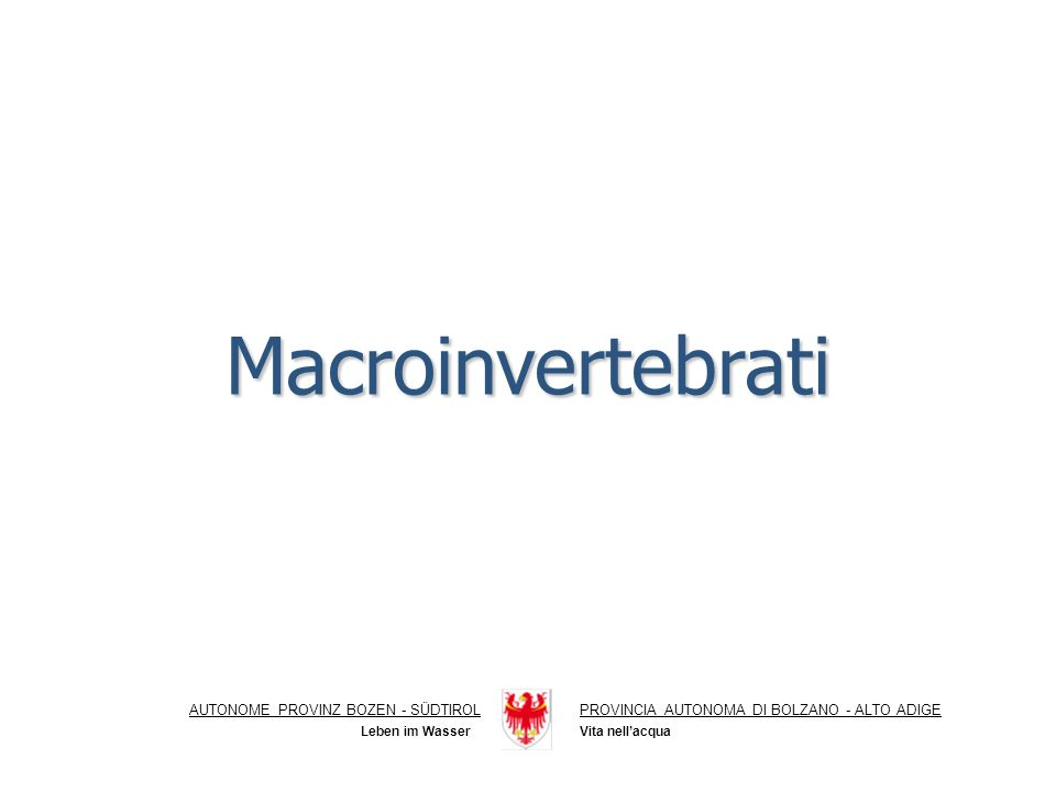 Macroinvertebrati AUTONOME PROVINZ BOZEN - SÜDTIROL