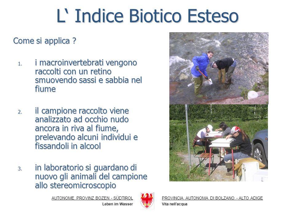 L' Indice Biotico Esteso