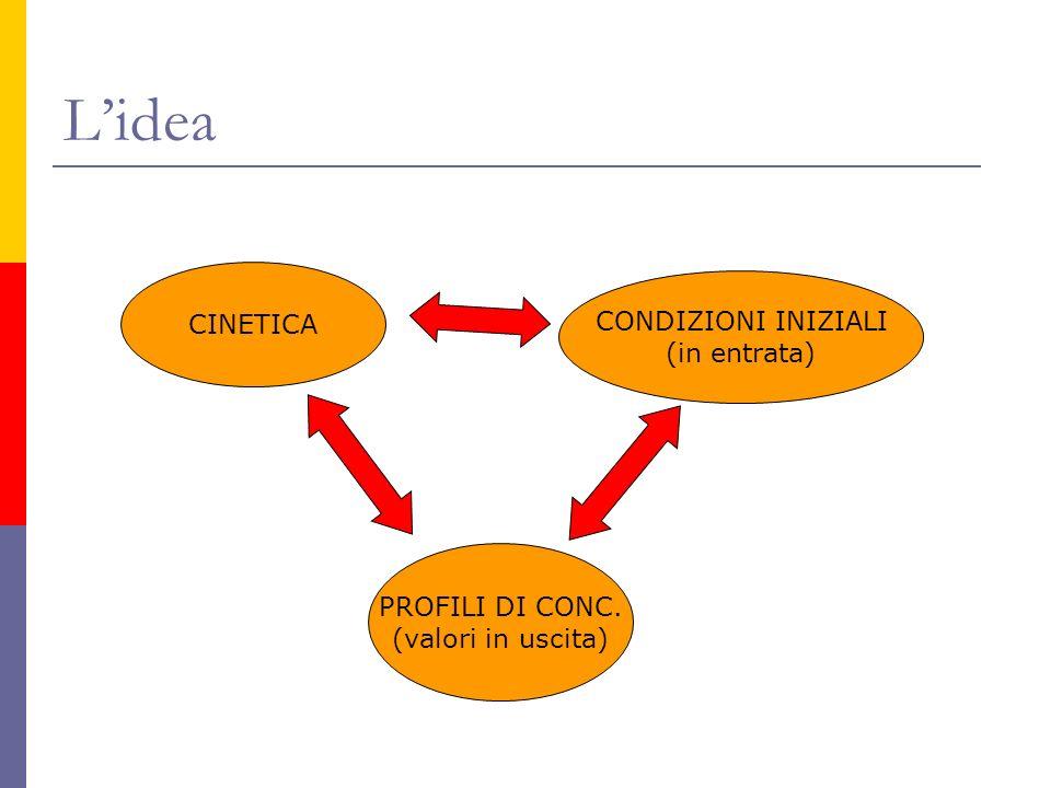 L'idea CINETICA CONDIZIONI INIZIALI (in entrata) PROFILI DI CONC.