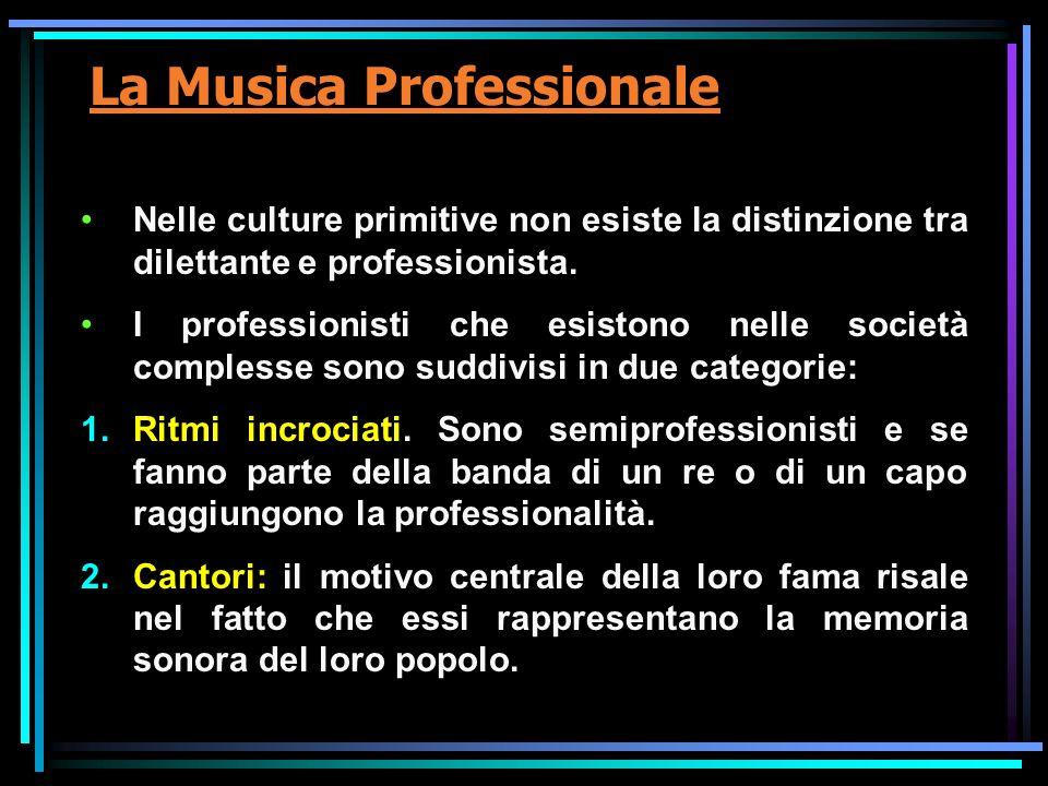 La Musica Professionale