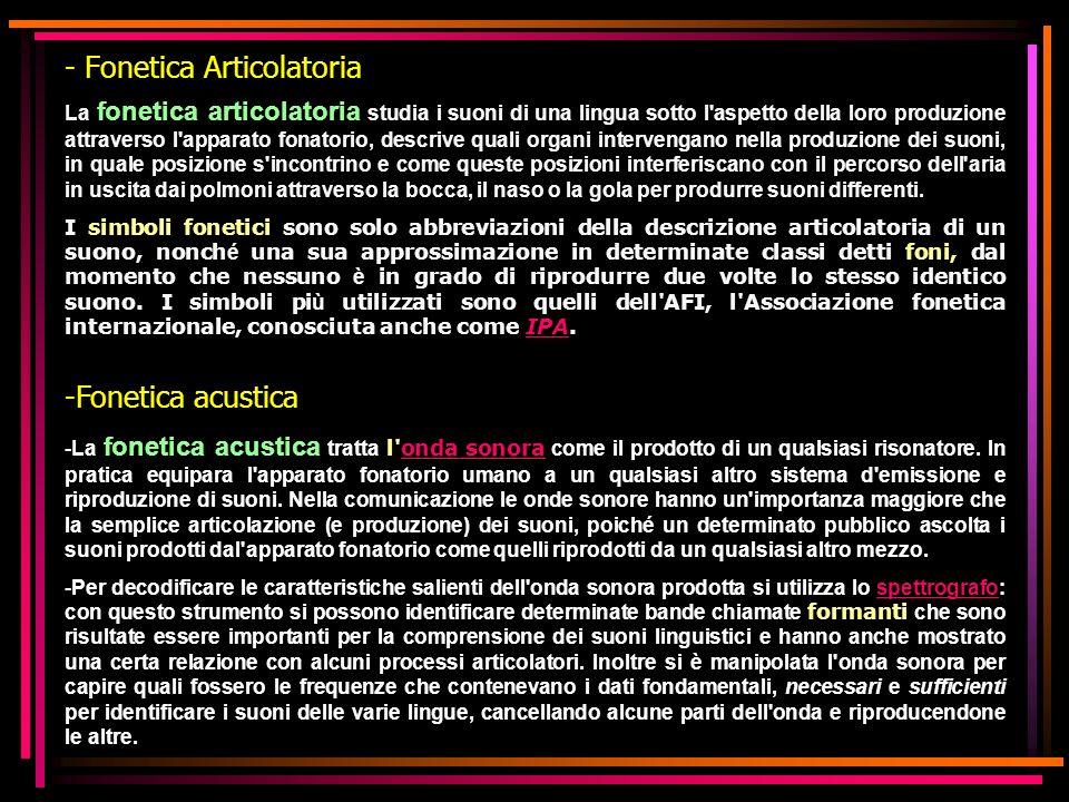 - Fonetica Articolatoria
