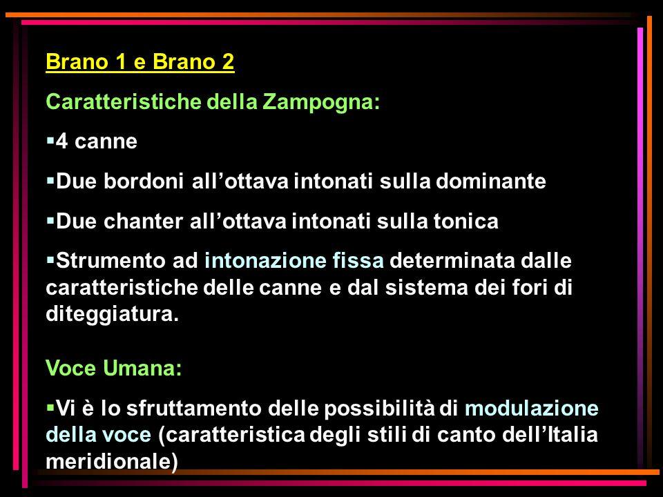 Brano 1 e Brano 2 Caratteristiche della Zampogna: 4 canne. Due bordoni all'ottava intonati sulla dominante.