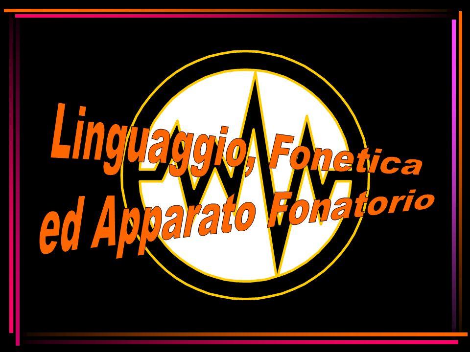 Linguaggio, Fonetica ed Apparato Fonatorio