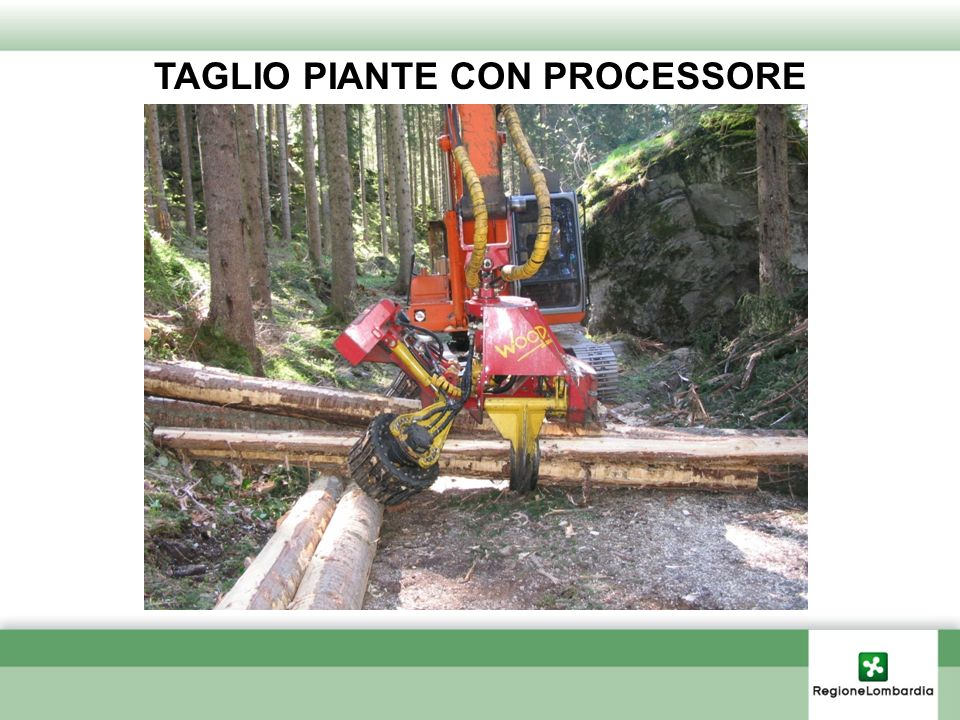 TAGLIO PIANTE CON PROCESSORE