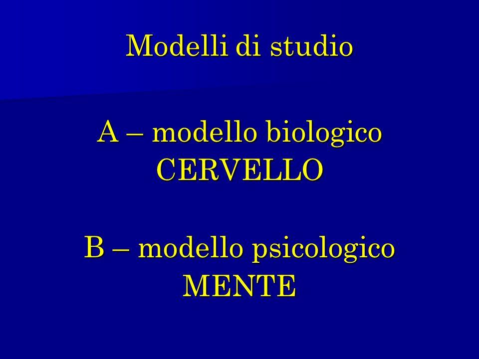 B – modello psicologico