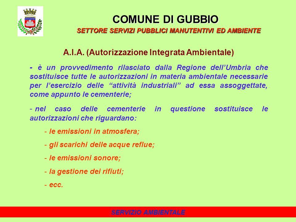 A.I.A. (Autorizzazione Integrata Ambientale)