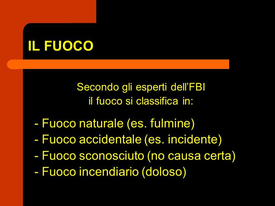 IL FUOCO - Fuoco naturale (es. fulmine)