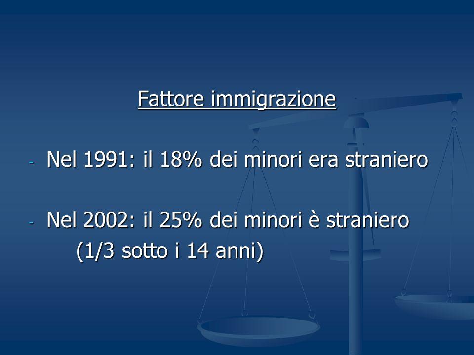 Fattore immigrazione Nel 1991: il 18% dei minori era straniero. Nel 2002: il 25% dei minori è straniero.