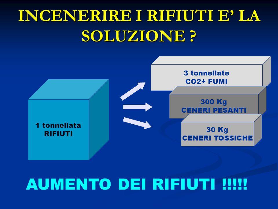 INCENERIRE I RIFIUTI E' LA SOLUZIONE