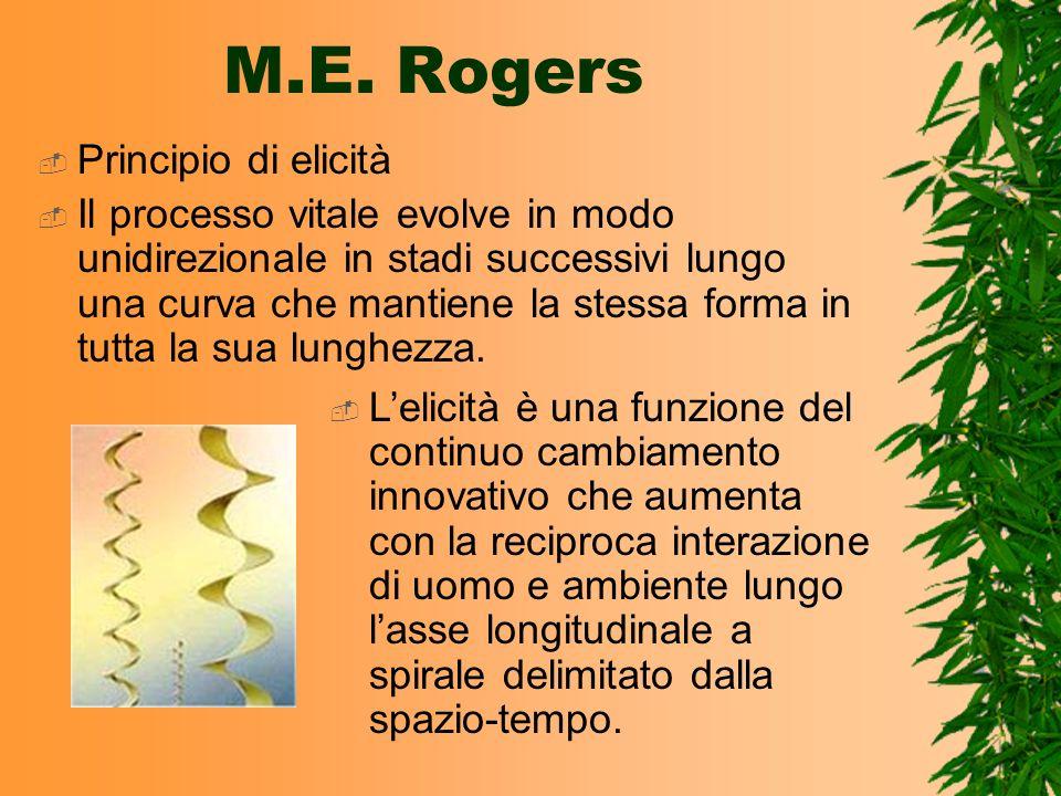 M.E. Rogers Principio di elicità