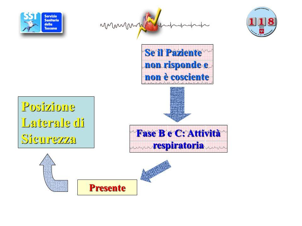 Fase B e C: Attività respiratoria