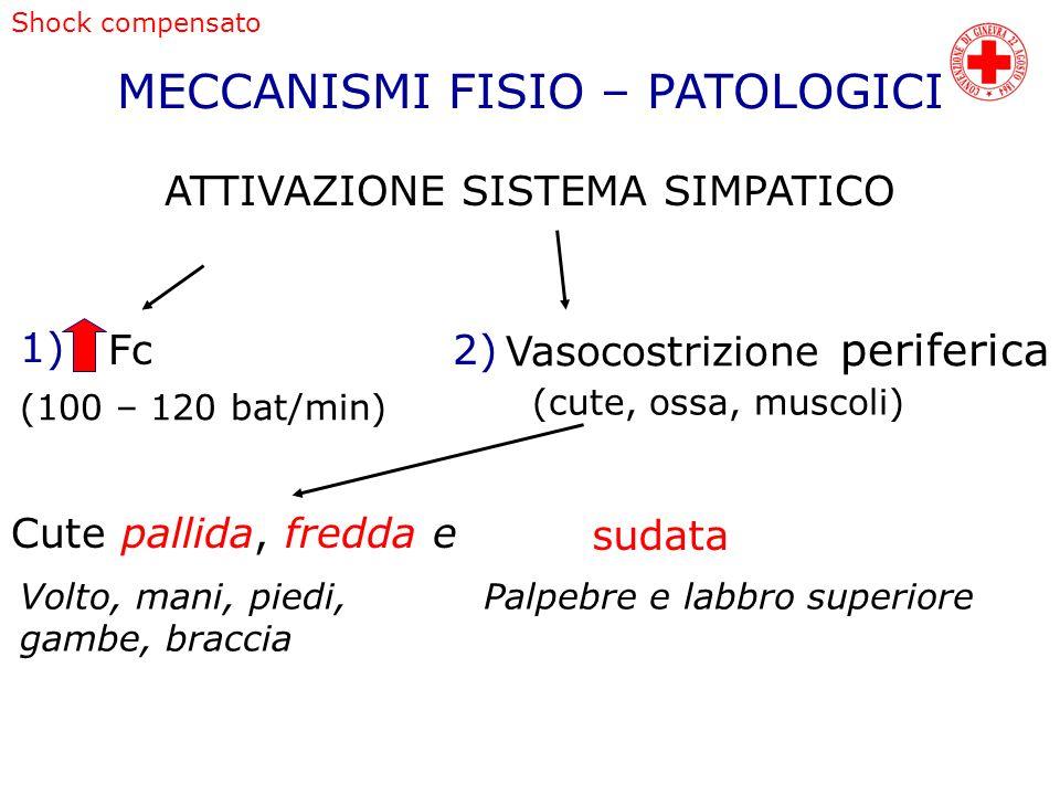 MECCANISMI FISIO – PATOLOGICI