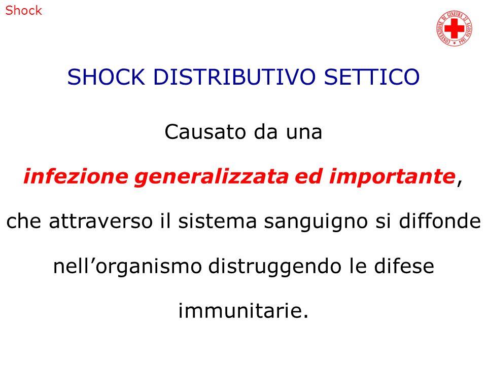 SHOCK DISTRIBUTIVO SETTICO