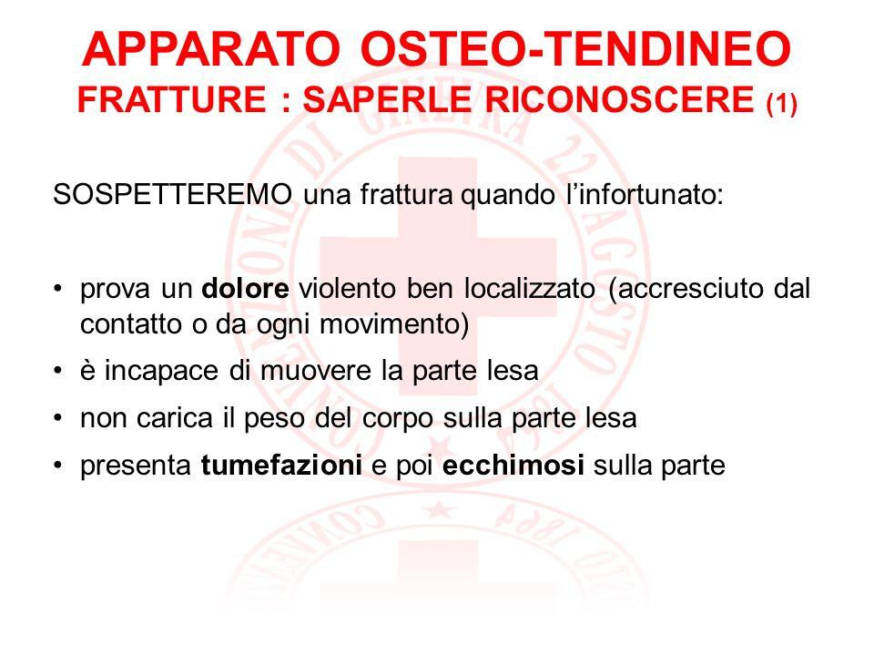 APPARATO OSTEO-TENDINEO FRATTURE : SAPERLE RICONOSCERE (1)