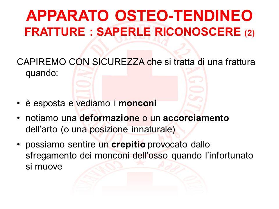 APPARATO OSTEO-TENDINEO FRATTURE : SAPERLE RICONOSCERE (2)