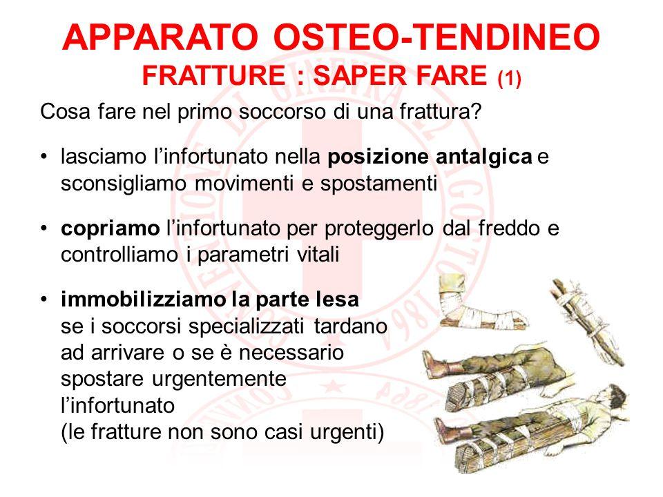APPARATO OSTEO-TENDINEO FRATTURE : SAPER FARE (1)