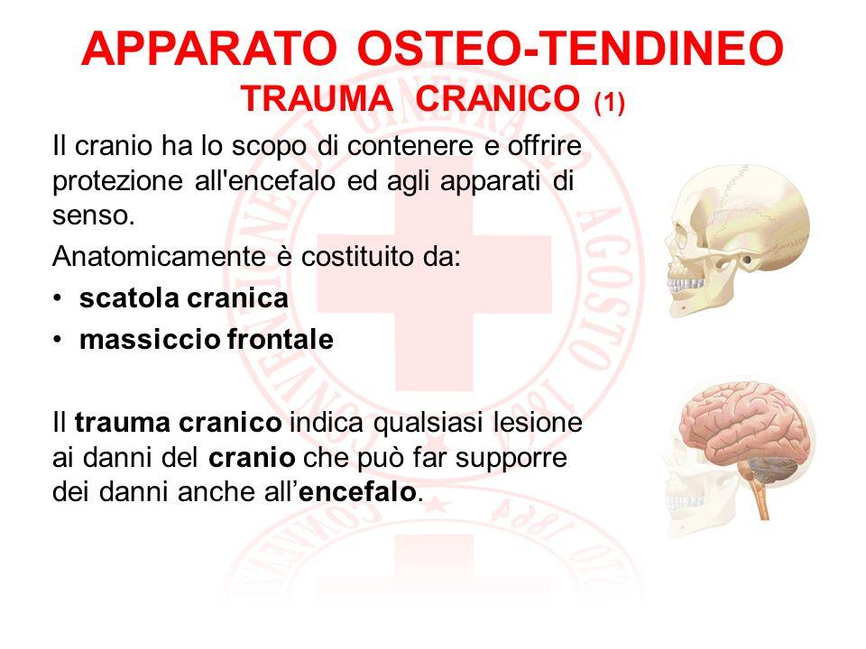 APPARATO OSTEO-TENDINEO TRAUMA CRANICO (1)