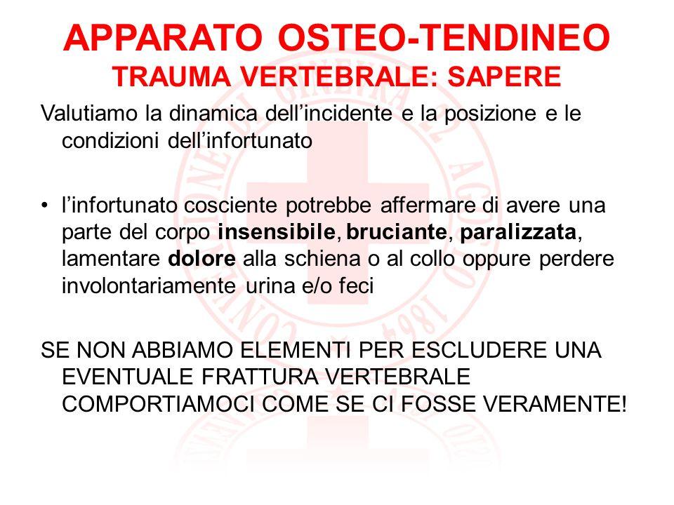 APPARATO OSTEO-TENDINEO TRAUMA VERTEBRALE: SAPERE