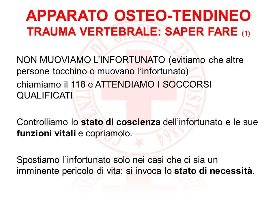 APPARATO OSTEO-TENDINEO TRAUMA VERTEBRALE: SAPER FARE (1)
