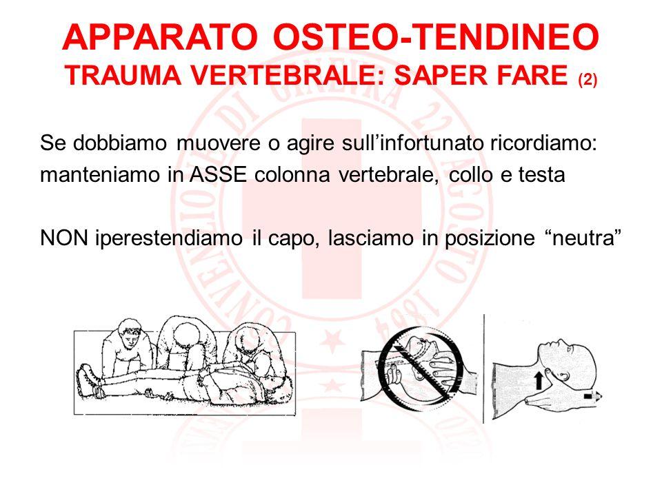 APPARATO OSTEO-TENDINEO TRAUMA VERTEBRALE: SAPER FARE (2)