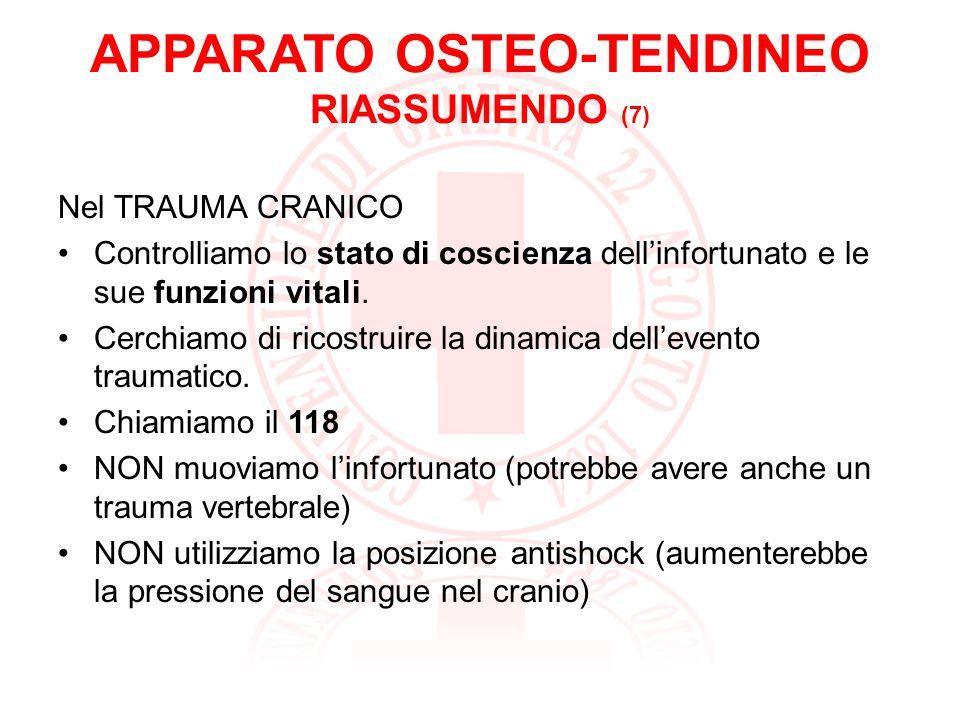 APPARATO OSTEO-TENDINEO RIASSUMENDO (7)
