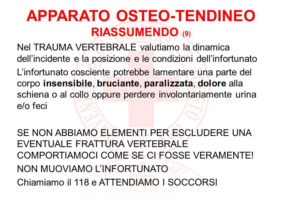 APPARATO OSTEO-TENDINEO RIASSUMENDO (9)