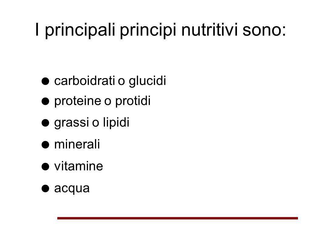 I principali principi nutritivi sono: