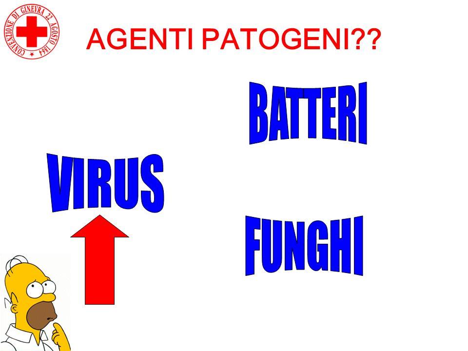 AGENTI PATOGENI BATTERI VIRUS FUNGHI