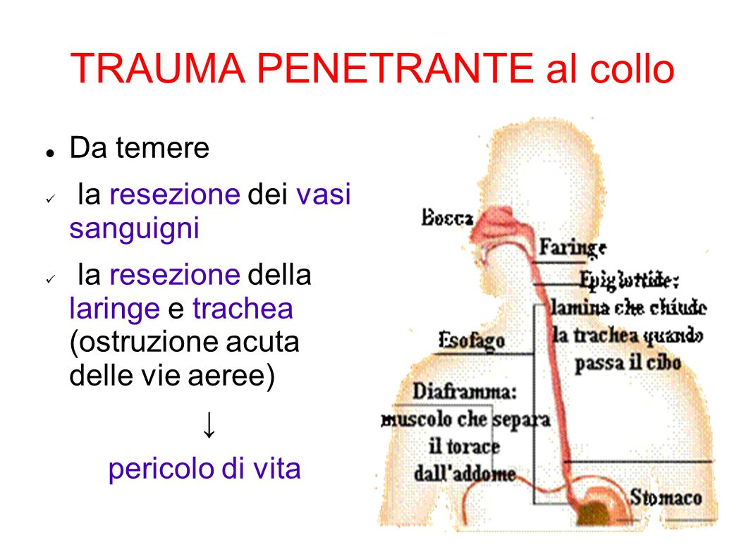 TRAUMA PENETRANTE al collo