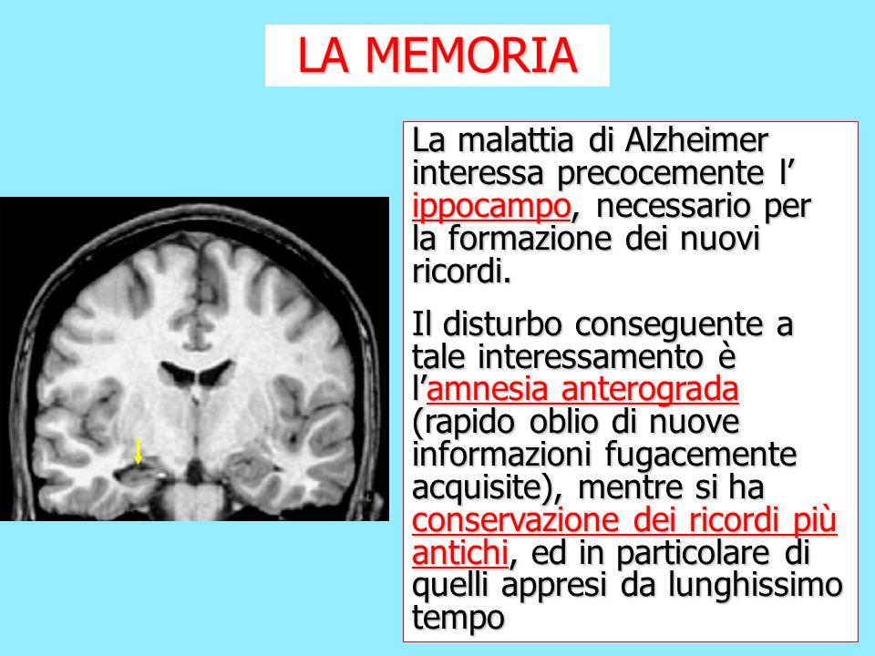 LA MEMORIA La malattia di Alzheimer interessa precocemente l' ippocampo, necessario per la formazione dei nuovi ricordi.