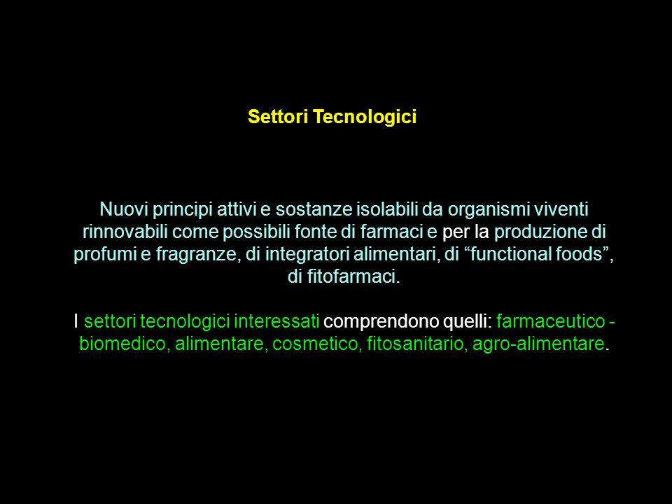 Settori Tecnologici