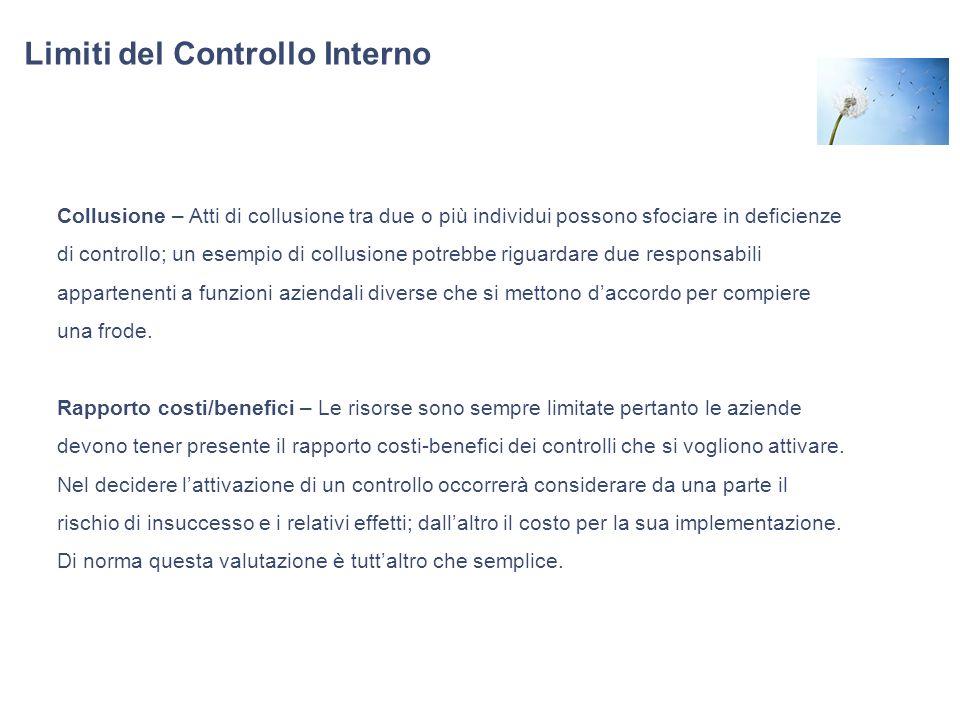 Limiti del Controllo Interno