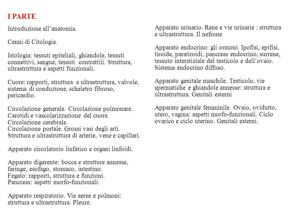 I PARTE Cenni di Citologia. e ultrastruttura. Il nefrone