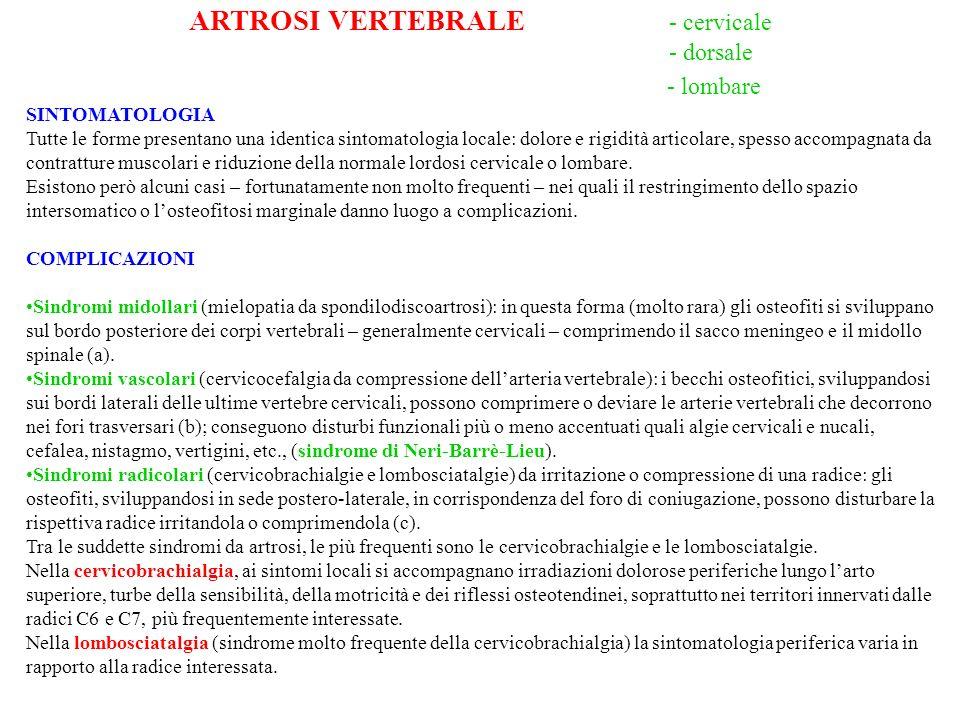 ARTROSI VERTEBRALE - cervicale
