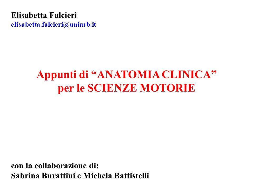 Appunti di ANATOMIA CLINICA