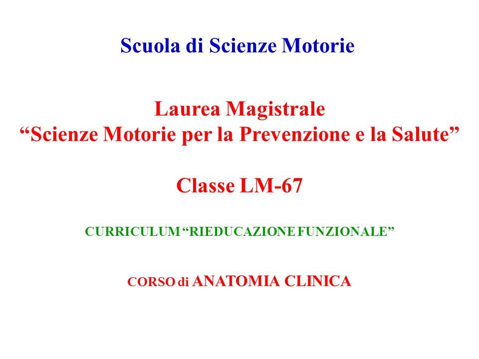 Scuola di Scienze Motorie