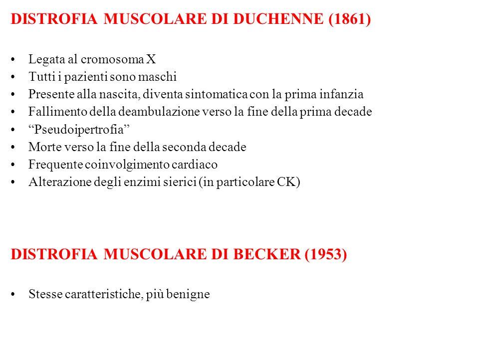 DISTROFIA MUSCOLARE DI DUCHENNE (1861)