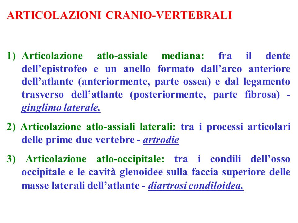 ARTICOLAZIONI CRANIO-VERTEBRALI