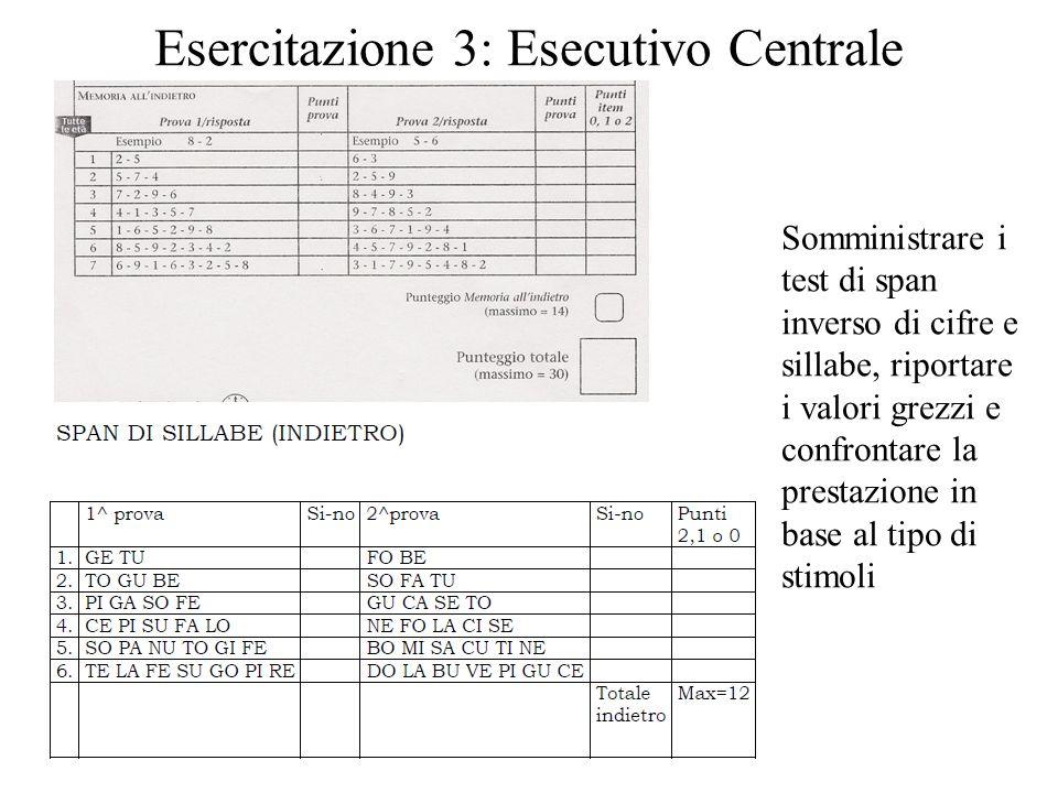 Esercitazione 3: Esecutivo Centrale