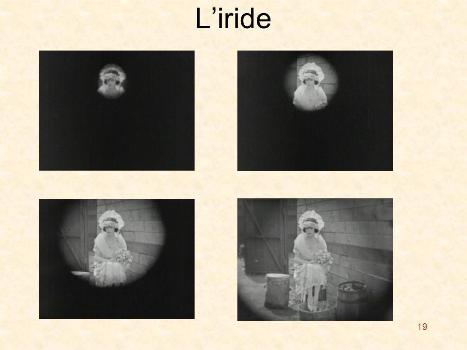 L'iride 19