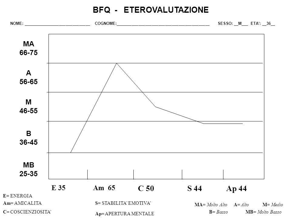 BFQ - ETEROVALUTAZIONE