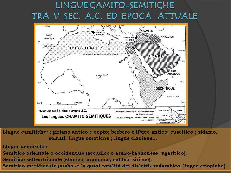 Lingue camito-semitiche tra V sec. a.C. ed epoca attuale