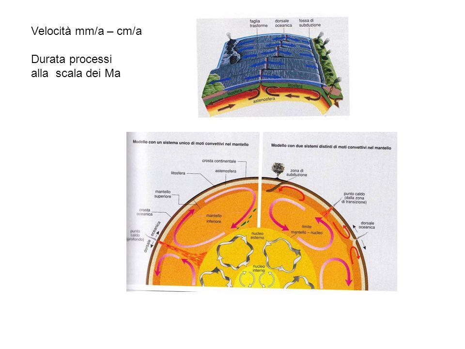 Velocità mm/a – cm/a Durata processi alla scala dei Ma