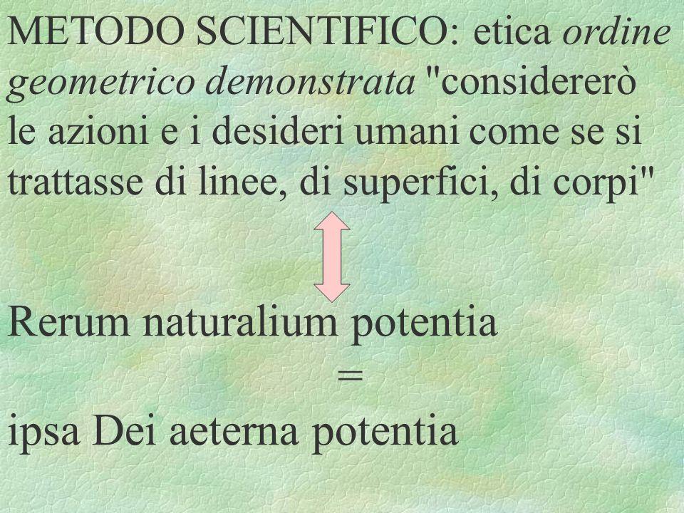Rerum naturalium potentia = ipsa Dei aeterna potentia