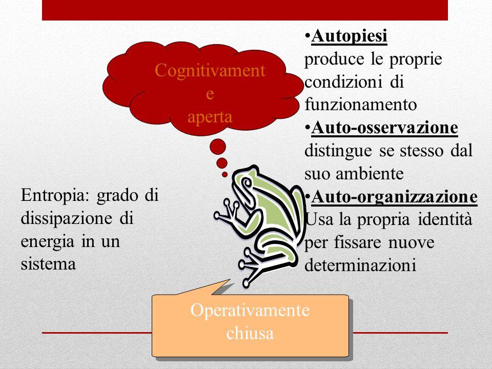 Autopiesi produce le proprie. condizioni di funzionamento. Auto-osservazione. distingue se stesso dal suo ambiente.