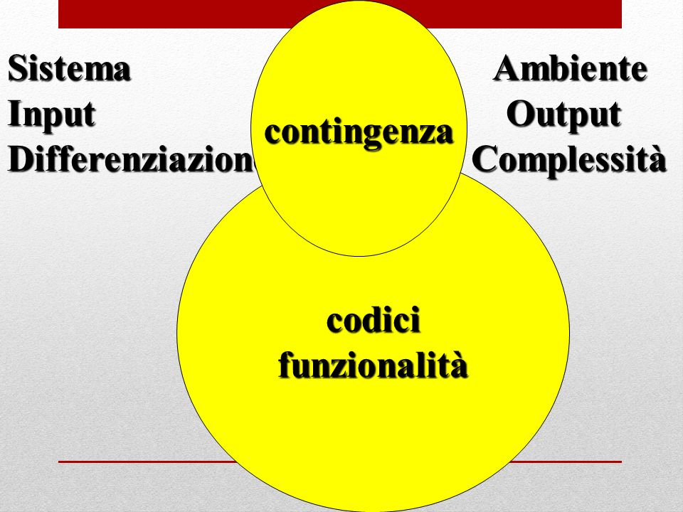 contingenza Sistema Ambiente. Input Output.