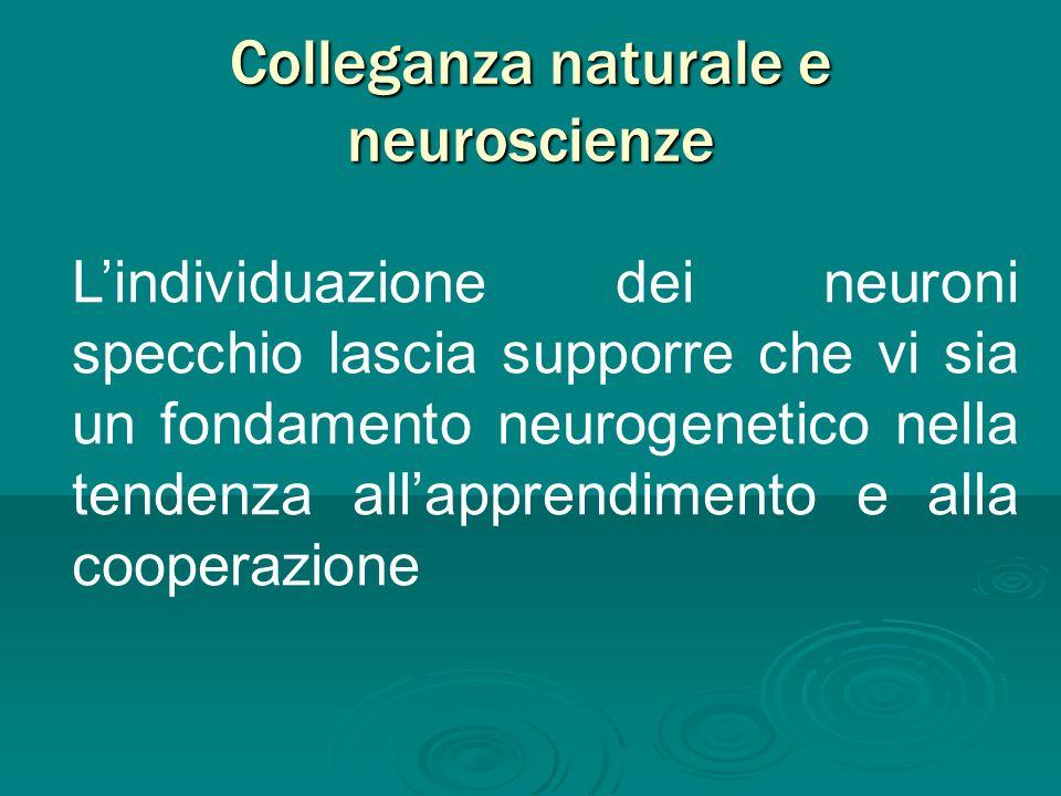 Colleganza naturale e neuroscienze