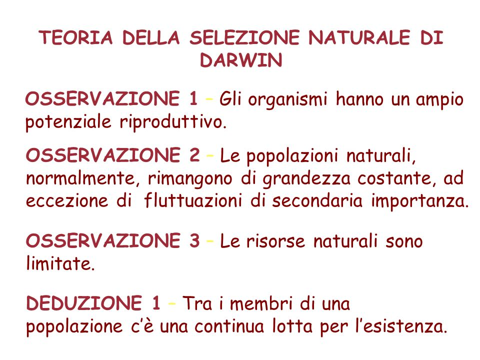TEORIA DELLA SELEZIONE NATURALE DI DARWIN